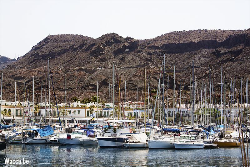 PuertoDeMogan