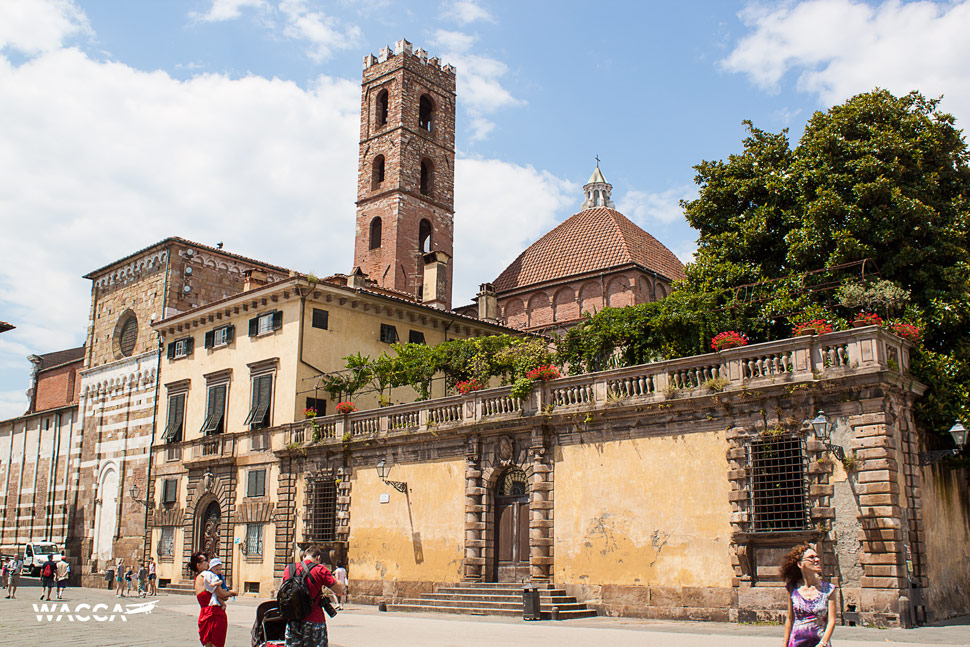 lucca-wacca-05