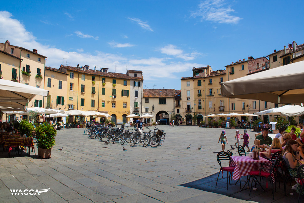 lucca-wacca-08