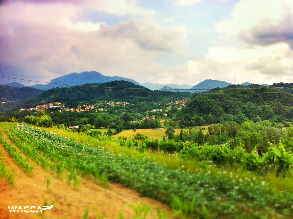 toscane-lagoroadtrip-wacca-01