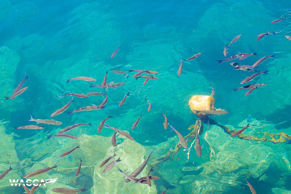 puerto-mogan-gran-canaria