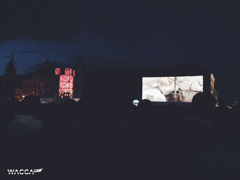 cluj-filmfestival