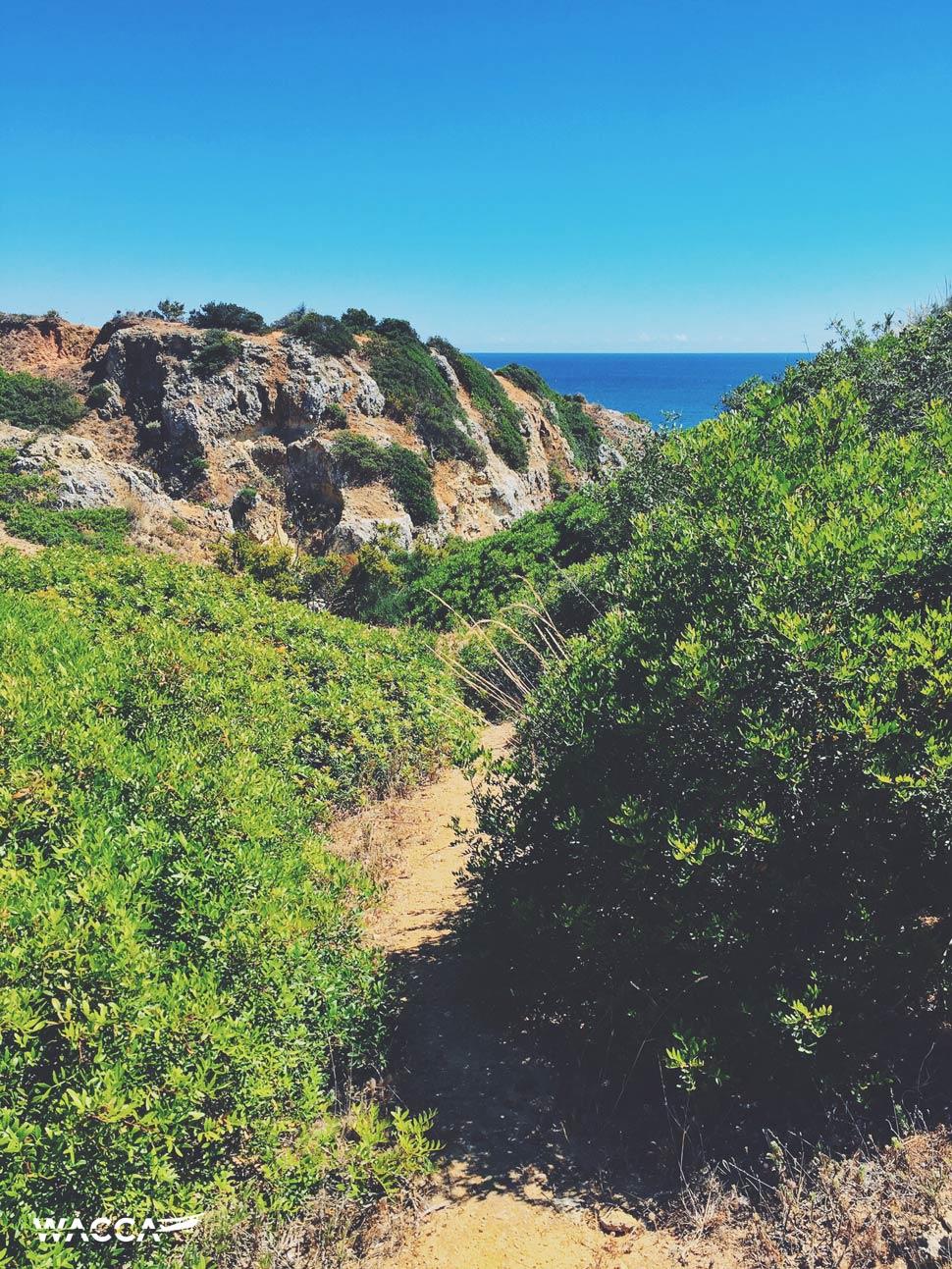 portugal-algarve-lagos-wacca-03