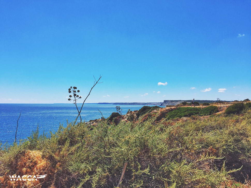 portugal-algarve-lagos-wacca-08