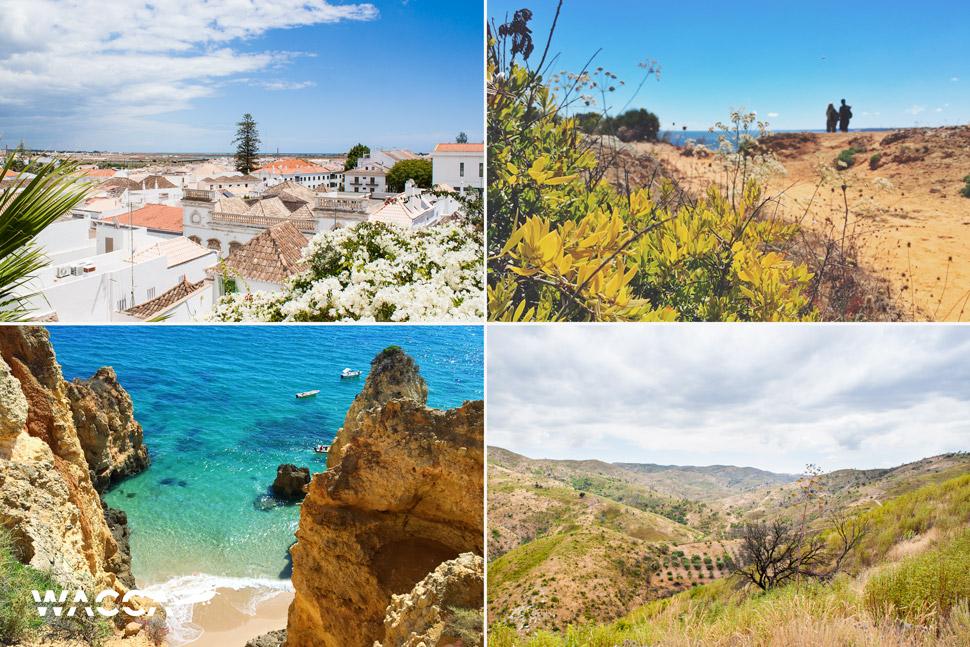 wacca-2015-Algarve