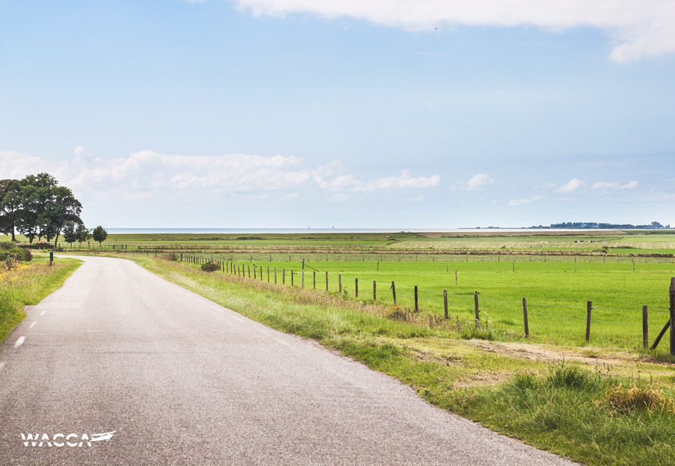 wacca-friesland-fietsen-nederland-02