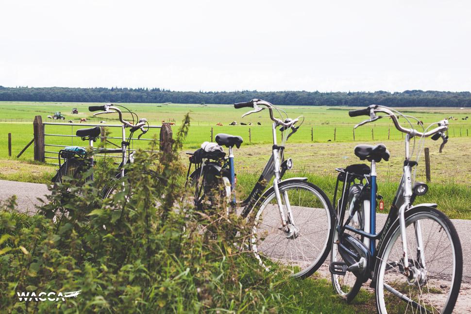 wacca-friesland-fietsen-nederland-03
