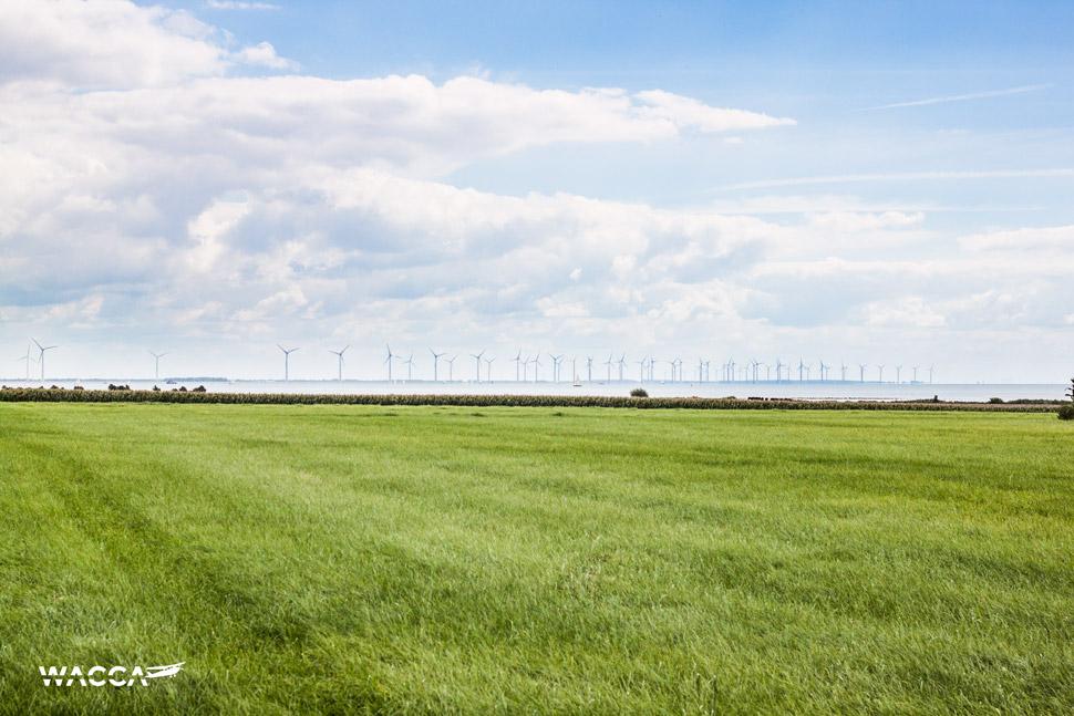 wacca-friesland-fietsen-nederland-04