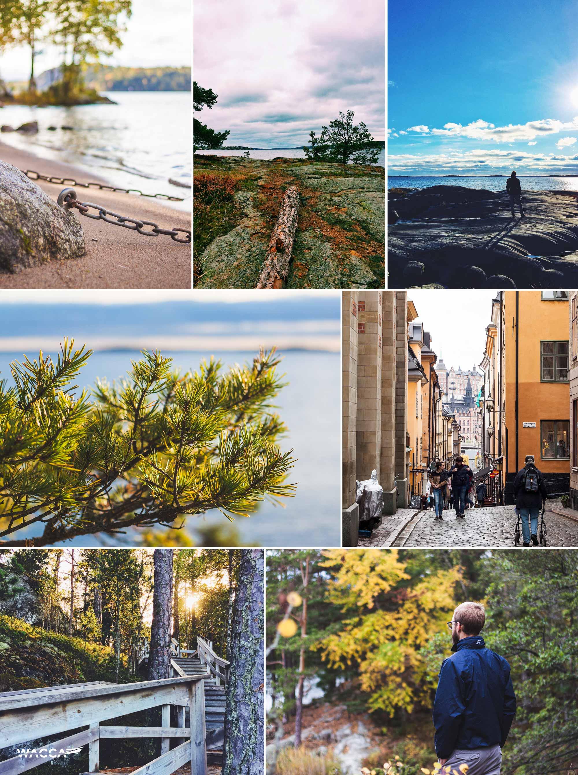 wacca-reisjaar-2017-zweden